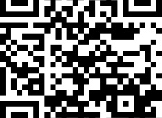 QR-CODE Kirchenvisite<div class='url' style='display:none;'>/kg/laupen/</div><div class='dom' style='display:none;'>kirchenregion-laupen.ch/</div><div class='aid' style='display:none;'>3551</div><div class='bid' style='display:none;'>11081</div><div class='usr' style='display:none;'>10967</div>